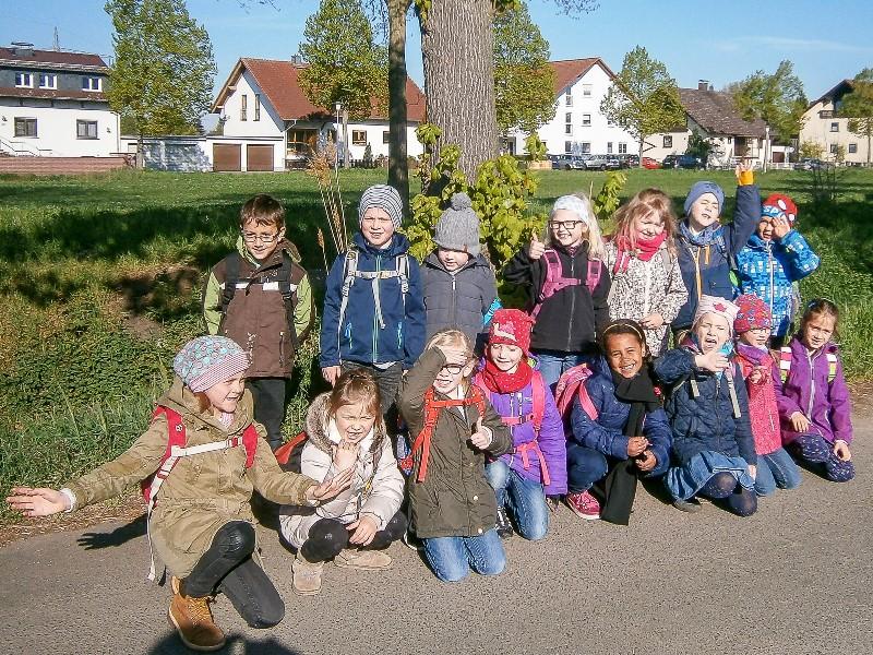 """Die angehenden Schulkinder der Kita """"Im Rüssel"""" haben den Bauernhof der Familie Ries besucht und die Geburt von Ferkeln miterlebt."""
