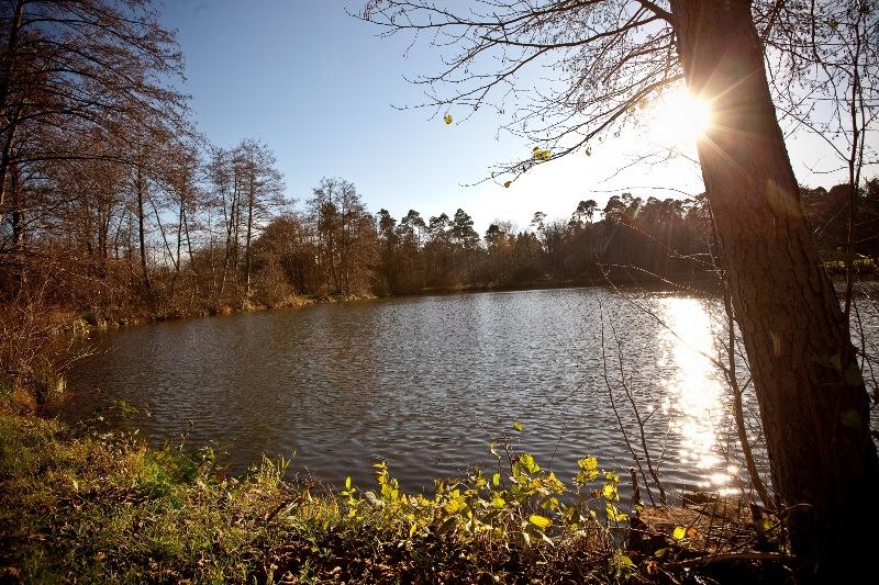 Der See am Freizeitzentrum ist die ideale Kulisse für die Open-Air-Veranstaltungen dieses Sommers. Foto: André Grohe