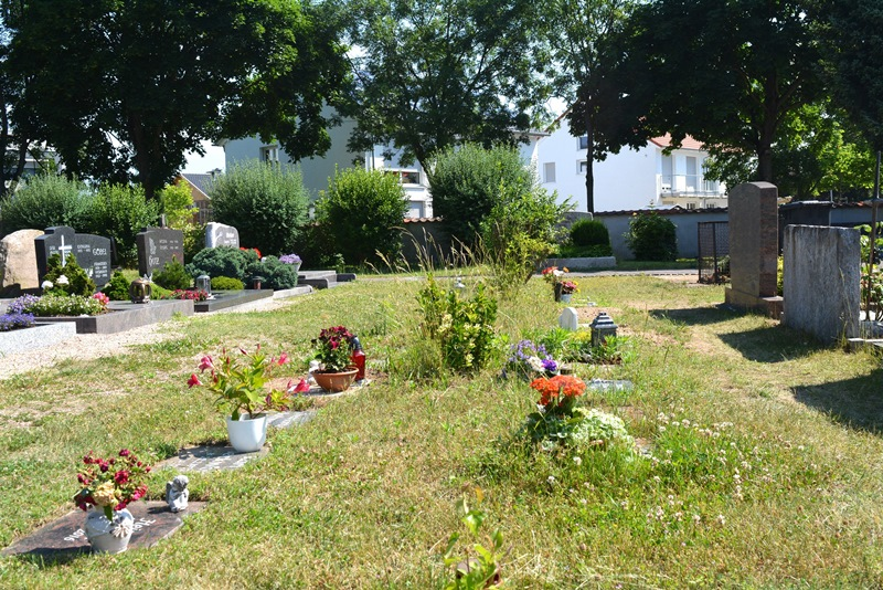 Schmuck auf den Wiesengräbern macht es für das Friedhofspersonal unmöglich, die Pflege- und Mäharbeiten auszuführen, für die die Angehörigen bezahlen. Foto: GM/ Meike Mittmeyer-Riehl