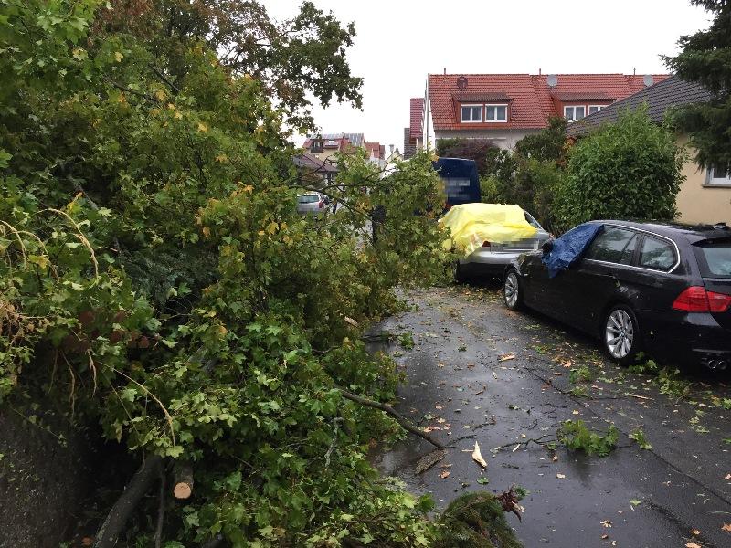 """Sturm """"Fabienne"""" hatte in Münster am 23. September große Verwüstungen hinterlassen. Aber die Bürger hielten zusammen. Foto: Freiwillige Feuerwehr Münster"""