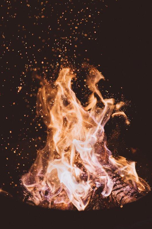 Beim Heizen mit Holz gibt es einiges zu beachten. Foto: Joshua Newton/Unsplash.com