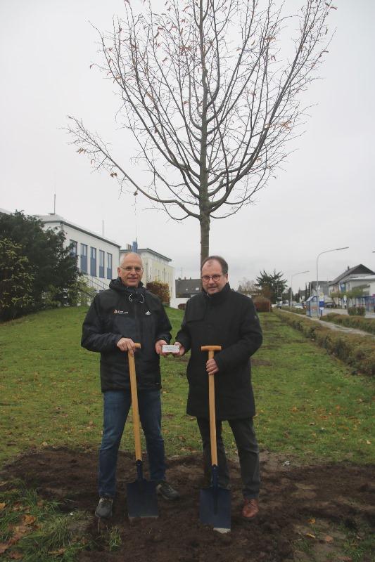 Bürgermeister Gerald Frank (links) und Edeka-Chef Erich Kampmann nach getaner Arbeit. Die Metallplakette mit der Aufschrift des Spenders wird noch am neuen Bäumchen befestigt. Foto: GM/Meike Mittmeyer-Riehl