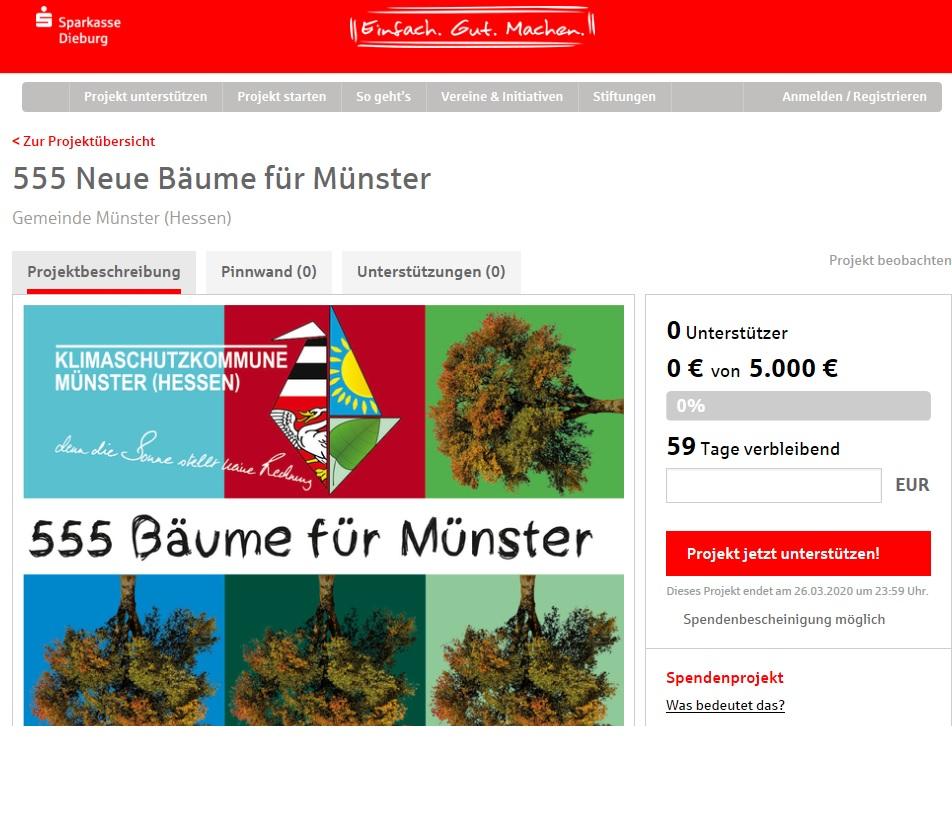 """Die neue Aktionsseite für """"55 Bäum für Münster"""" ist jetzt online."""